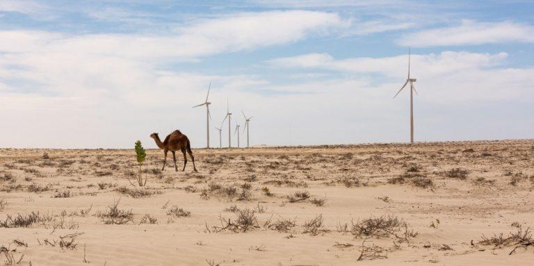 Conférence énergie | Alliance Sahel
